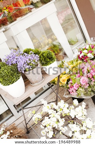Various potted plants and flowers sit on shelves outside a window. - stock photo