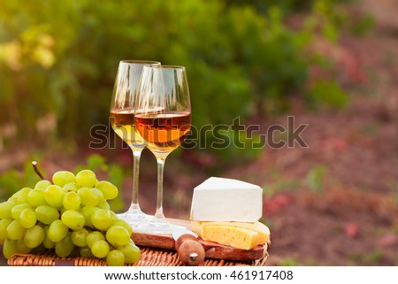 Various sorts of cheese, Two glasses of white wine in the vineyard. selective Focus