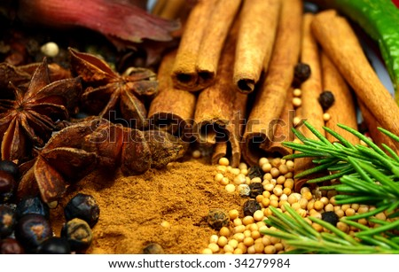 various spices - stock photo