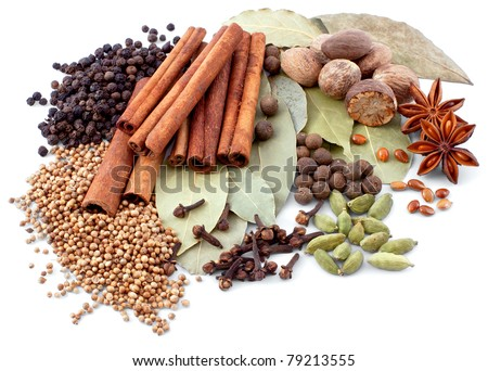 various spices isolated over white background