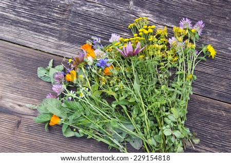 various summer fresh colorful medical flowers herbs on old wooden background - stock photo