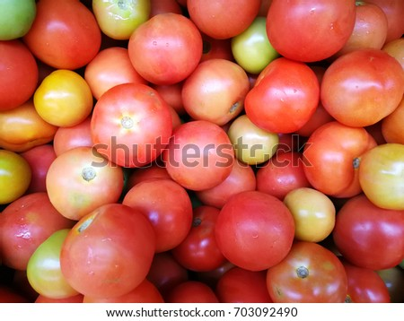 Various type and color of tomatoes