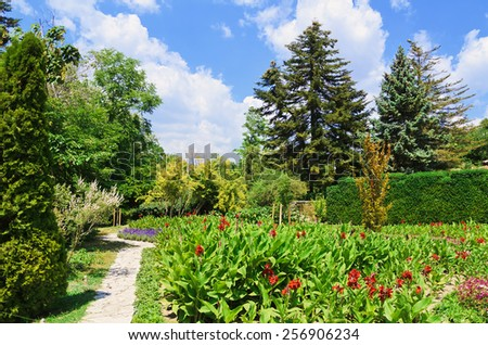 Various Type Of Plants And Flowers In The Garden  - stock photo