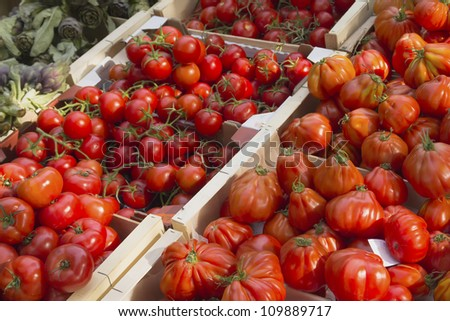 tomato type fruit stock images, royaltyfree images  vectors, Natural flower
