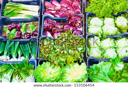 Various vegetables at market - stock photo