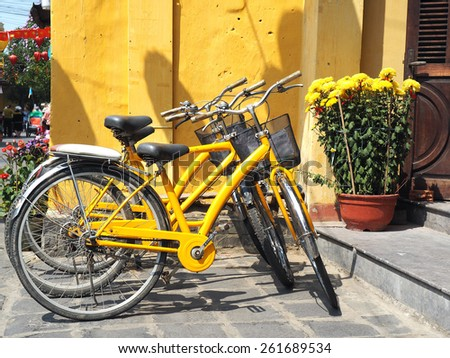 Various yellow bikes for rent in a row parked near yellow wall   and yellow flower           - stock photo