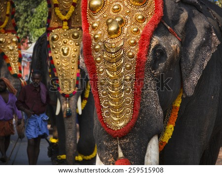VARKALA, INDIA - FEBRUARY 8, 2015: Elephant festival at a small temple in Varkala, Kerala. Thrissur Pooram is the most popular elephant festival in India.