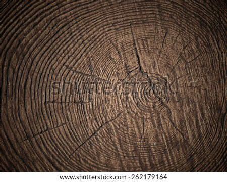 varnished board - stock photo