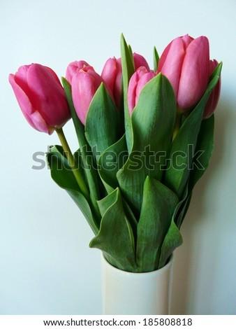 Vase of pink tulips - stock photo