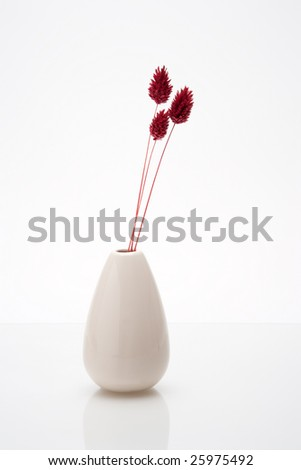 vase on glass shelf with three dried flowers