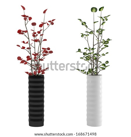 Vase with Flower plant isolated - stock photo