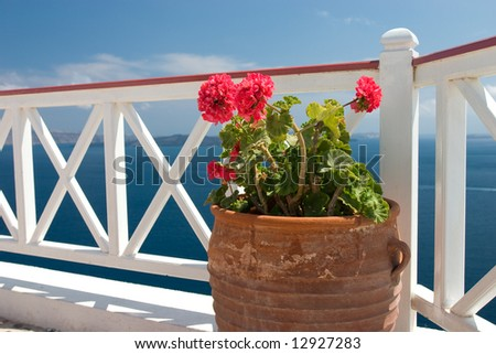 Vase with geraniums on the balcony in Greek island Santorini