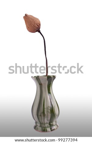 Vase with lotus old on background