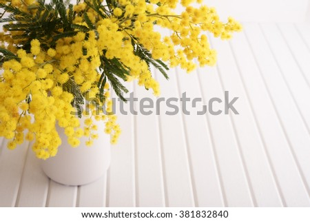 Vase with mimosa flowers - stock photo