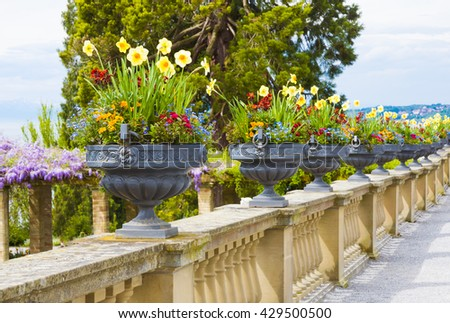 Vases with flowers in a park