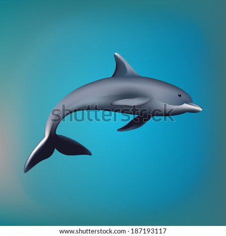 Vector illustration. The dolphin on a background.