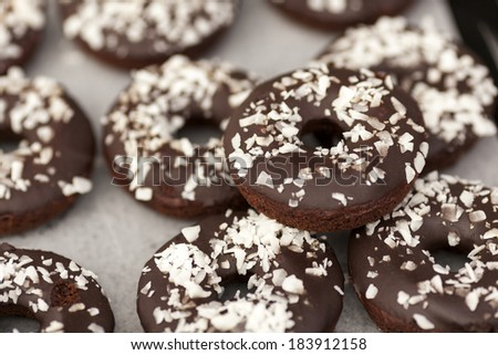 Vegan gluten free chocolate covered cake doughnuts with coconut sprinkles. - stock photo