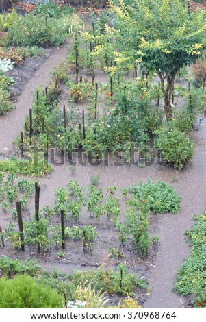 Vegetable garden after heavy rain - stock photo