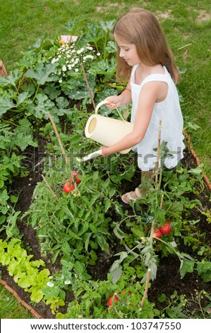 Charmant Vegetable Garden   Lovely Girl Watering Vegetables In The Garden