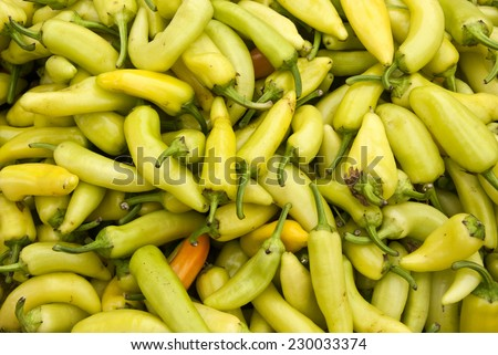 Vegetable Garden - Yellow Chile Peppers - Banana Peppers / Yellow Chile Peppers - stock photo