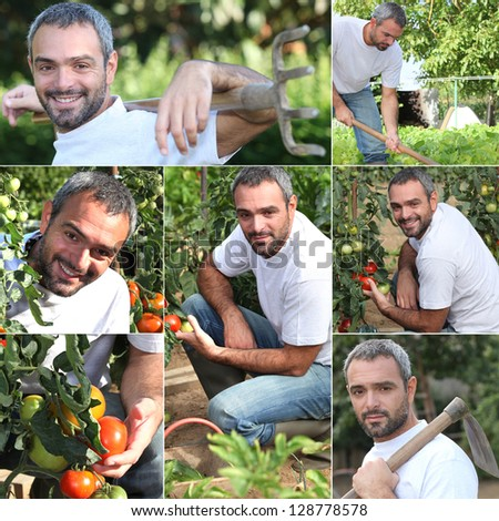 Vegetable gardener - stock photo