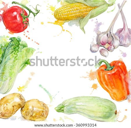Vegetable  hand painted watercolor frame with splashes on white background. Design for food, farmers production and grocery store.   - stock photo