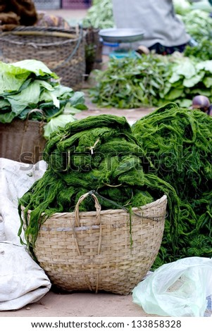 Vegetable Laos food is Green Spirogyra in Basket at Laos Market.