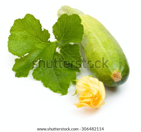 Vegetable marrow squash zucchini with flower and green leaves isolated on a white - stock photo