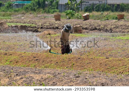vegetable plot and the area that to prepared  for planting vegetable crops at Nontaburi province, Thailand. - stock photo