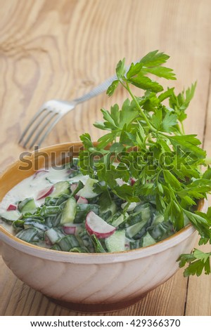 Vegetable salad with cucumber, radish and onion .Selective focus