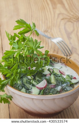 Vegetable salad with cucumber , radish and onion. Selective focus