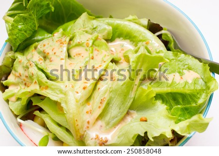 Vegetable salad with Japanese cream salad sauce isolated.