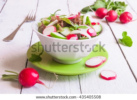 Vegetable salad with radish, cucumber and rucola - stock photo