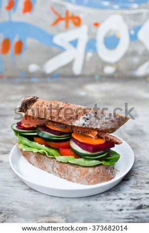 Vegetable Sandwick with Fresh Salmon on white plate. Urban background, Quikly Breakfast. Hipster food. - stock photo
