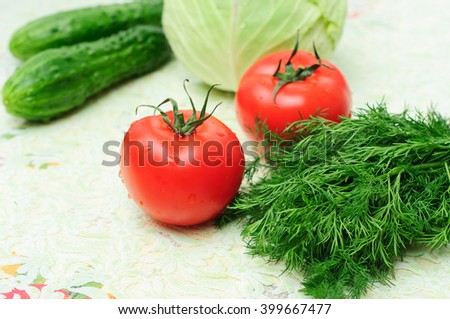 Vegetable set of tomatoes, cucumbers and dill