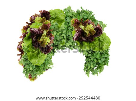 Vegetable wig isolated on white - stock photo
