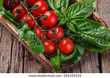 Vegetables and herbs for salad, vintage shoulder blade.Cherry tomatoes,Basil, arugula and lettuce.selective focus - stock photo