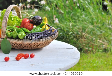 vegetables in basket placed on a garden table - stock photo