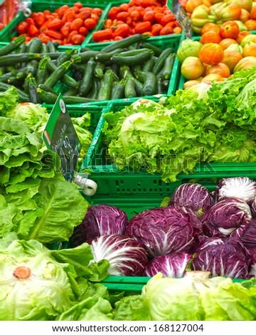 vegetables on store shelves - stock photo