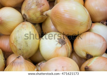 Vegetables onions background