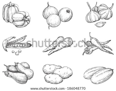 Vegetables. Set 1 of vegetables at engraving style  - stock photo