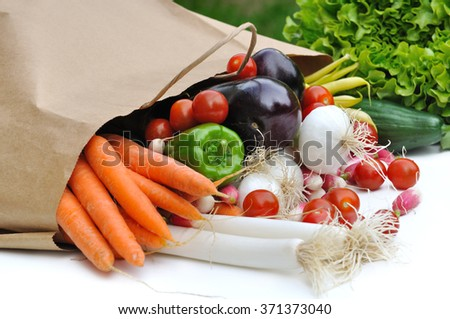 Vegetables spilled a paper bag on white background - stock photo