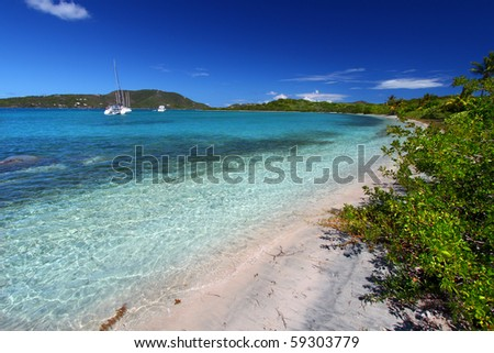 Vegetation along a beautiful beach - British Virgin Islands - stock photo