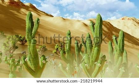 vegetation on a desert - johua tree and cacti - stock photo