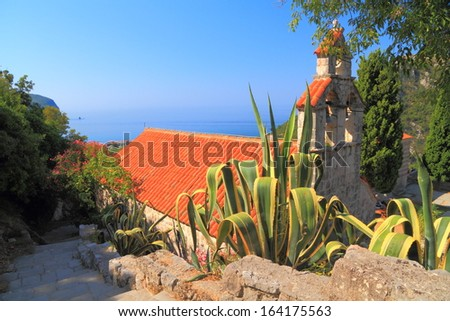 Vegetation surrounding an old orthodox monastery near the Adriatic sea