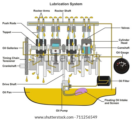 Vehicle Lubrication System Infographic Diagram Showing Stock ...