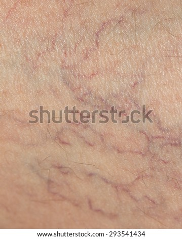 veins on the skin. close