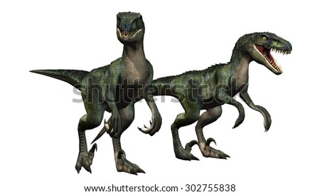 velociraptors dinosaurs - isolated on white background