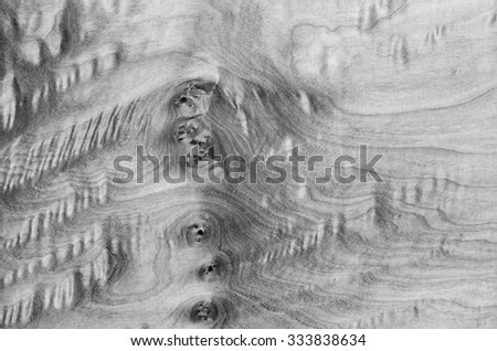 veneer wood texture in black and white tone