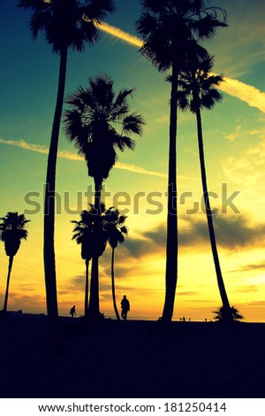 Venice Beach sunset. Black and white. Tropical Caribbean landscape background - stock photo